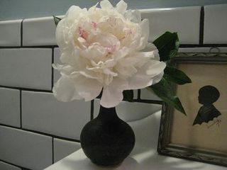 Peonies silhouette and subway tile